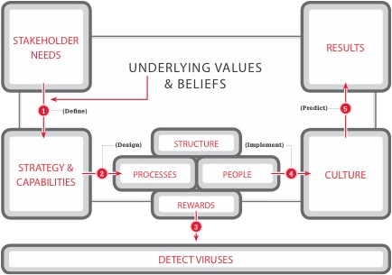 organizational theory design and change case studies